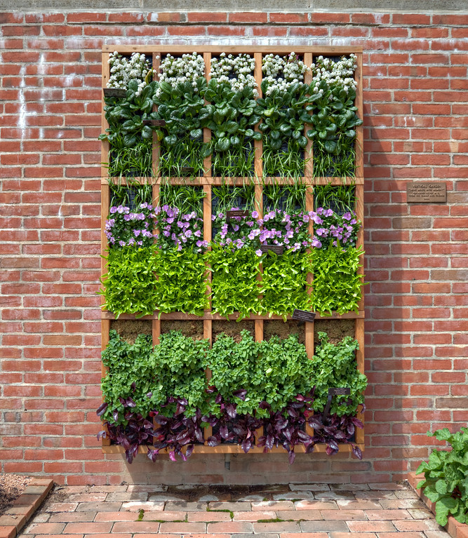 Garden on the wall or is that in the wall Or is that in a box